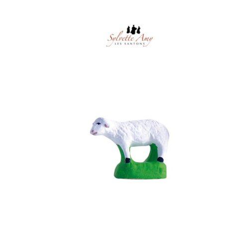 Mouton droit